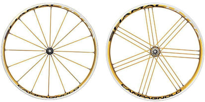 Picture of Rodas SHAMAL ULTRA GOLD pneu Campy par