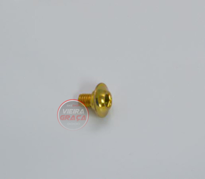 Picture of Parafuso fix. laterais depósito TM Racing - M6x7mm