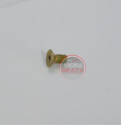 Picture of Parafuso fixação guia corrente TM Racing - M5x10mm