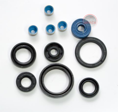 Picture of Kit retentores motor TM Racing 250Fi - ≥2018
